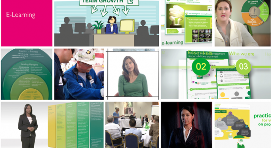 Corporate e-learning snapshots